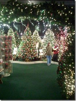 ChristmasShop_2012-11-12_0012